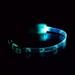 """Ошейник светящийся  """"Лапки"""" прозрачный 10 мм, (20-27 см), (7 реж"""