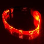 """Ошейник светящийся  """"Лапки"""" прозрачный 10 мм,(20-27 см), красный"""