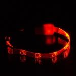 """Ошейник светящийся  """"Лапки"""" прозрачный 10 мм, (20-27 см), оранж."""